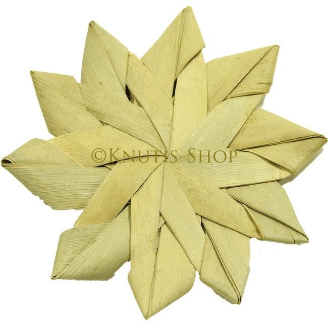 Palmblattblume